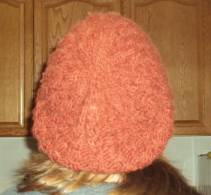 Back of hat!